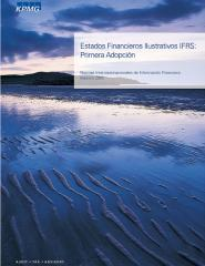 2010-02-kpmg-audit-estado-financiero-ilustrativo.pdf