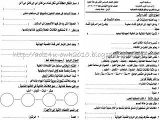 science exams g4 t2.pdf